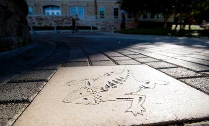 Large concrete paver featuring the TCU Horn Frog logo