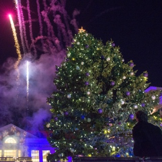 A large fresh tree is unveiled on the TCU campus with lights, crowds, revelers and fireworks